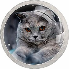 Cabinet Knobs Pulls Cute Cat Round Crystal Glass