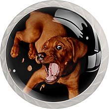 Cabinet Knobs Pulls Funny Dog Round Crystal Glass