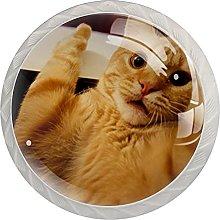 Cabinet Knobs Round Drawer Pulls 4 pcs Orange Cat