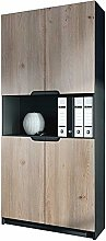 Cabinet with 4 Doors and Open compartments,