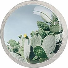 Cacti with Yellow Flower 4pcs Crystal Glass