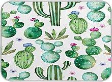 Cactus Green Succulents Plants Floral Flower Dish