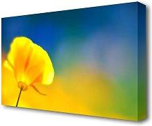California Poppy Yellow Flowers Canvas Print Wall