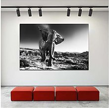 Canvas Print Wall Art Elephant Posters Wall