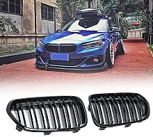 Car Two Line Front Spruce Kidney Grille Net Grill,