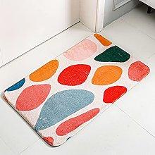 Carpet Entry Mat Absorbs Entrance Doormat