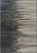 Carpet New dis. 7998 120x170