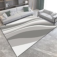 Carpets sitting room rugs washable Gray white