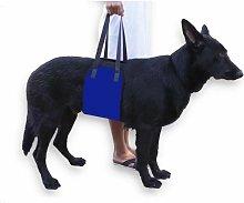 Carrying Belt for Pets Dog Transport Belt Pet