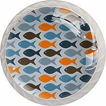 Cartoon Fish Blue Orange White Crystal Drawer