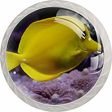 Cartoon Fish Yellow 4 Pieces Crystal Glass