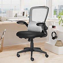 CASART Office Mesh Swivel Desk Chair with Lumbar