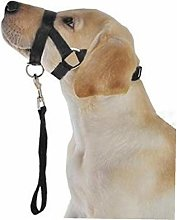 Casecover 1 Piece of Dog Pet Dog Padded Collar