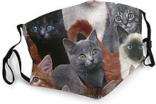 Cat Kitten Lovely Bandana Face Mask Neck