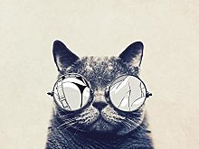 Cat with Glasses pet-30x40cm,DIY 5D Diamond