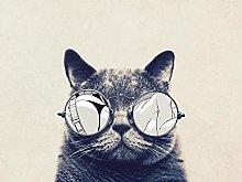 Cat with Glasses pet-50x60cm,DIY 5D Diamond