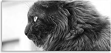 Cats Grey Art Black White Animal Kingdom Canvas