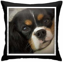 Cavalier King Charles Spaniel Pillow Cover Square