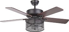 Ceiling Fan with Light Glass Shade Speed Control