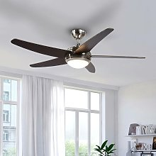 Ceiling Fans with Lighting 'Anneka' with
