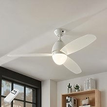 Ceiling Fans with Lighting 'Piara' with