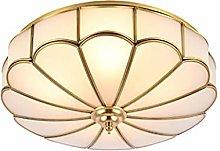 Ceiling Light Fixture,80cm(31inch) Glass Shade