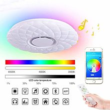 Ceiling Light with Smart Alexa WiFi Ceiling Lamp