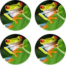 Ceramic Coasters for Drinks,red Eyed Green Tree