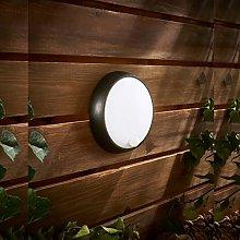 CGC Black Opal Round LED Bulkhead Wall Ceiling