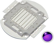 Chanzon High Power Led Chip 50W Purple Ultraviolet