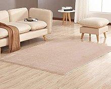 chen Area Rugs Anti-Skid Yoga Shaggy Carpets Floor
