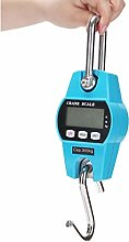 CHICTI Mini Hook Electronic Scale, Portable Parcel
