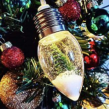 Christmas Snow Globe String Lights, 2.6ft 6 Bulbs