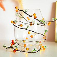 Christmas String Lights Fruits Flowers 20LED