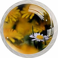 Chrysanthemum Round Cabinet Knobs 4pcs Knobs for