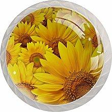 Chrysanthemum Yellow Sunflower White Crystal