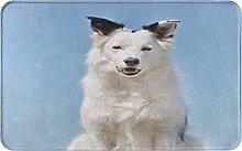 CIKYOWAY Bathroom Mat -Border Collie Puppy,Door
