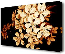 Cocoa Flowers Flowers Canvas Print Wall Art East