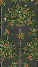Cole & Son Orange Blossom Wallpaper