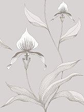 Cole & Son Orchid Wallpaper