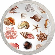 Conch Seashell Marine Life Glass Cabinet Knobs