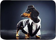 CONICIXI Bath Mats,Portrait of a dachshund dog