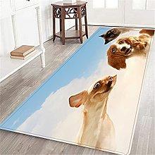 CONICIXI Long Floor Mat,Three home pets next to