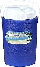 Cool Box 3L, Mini Portable Cooler Box with Handle,