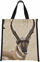 Cooler Bags Antelope Pronghorn Tall Brown Grass