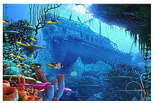 Coral Boat Under The Sea Front Door Mat,Inside or