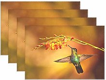 CPYang Placemats Set of 4, Tropical Flower