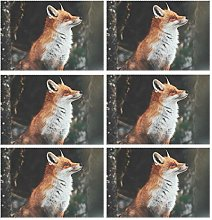 CPYang Placemats Set of 6, Forest Animal Fox Place