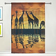 CPYang Sheer Curtain African Animal Giraffe Voile