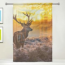 CPYang Sheer Curtain Animal Deer Forest Tree Voile